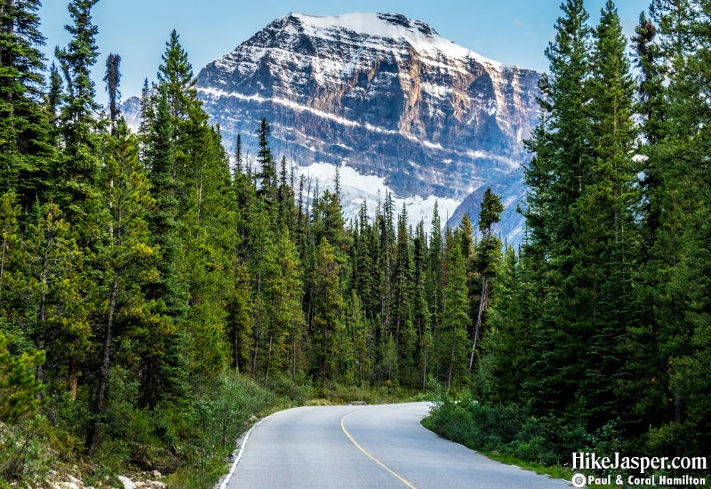 Driving to Hike Edith Cavell Meadows and Mountain in Jasper