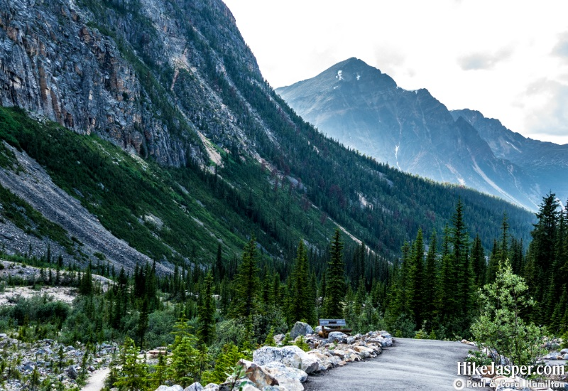 Paved Trail Towards Mount Edith Cavell