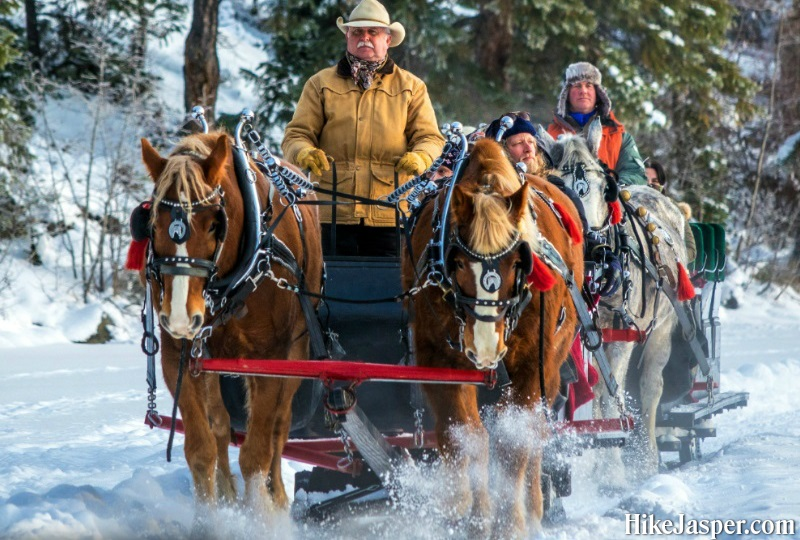 Winter in Jasper National Park - Horse Drawn Sleigh Rides