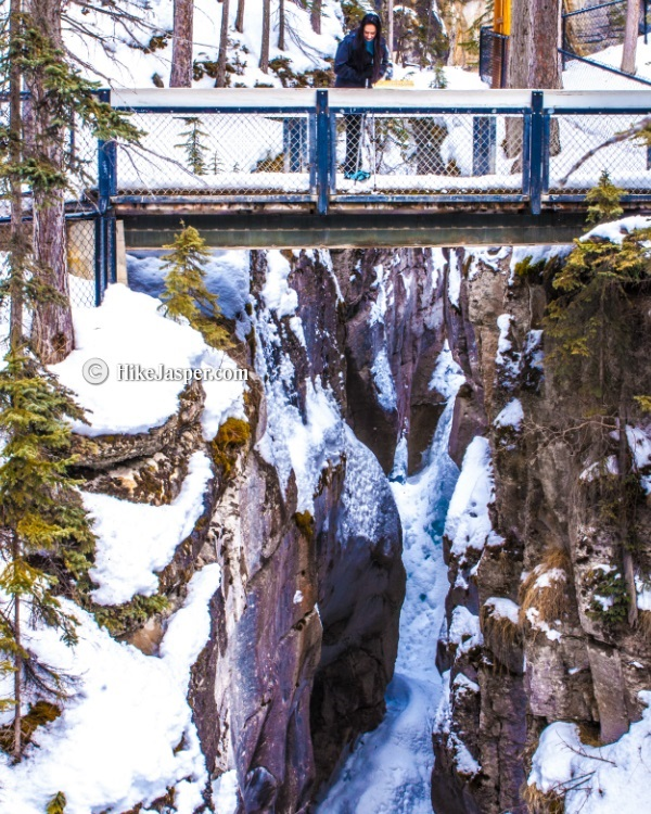 Maligne Canyon Ice Walk 2017 4