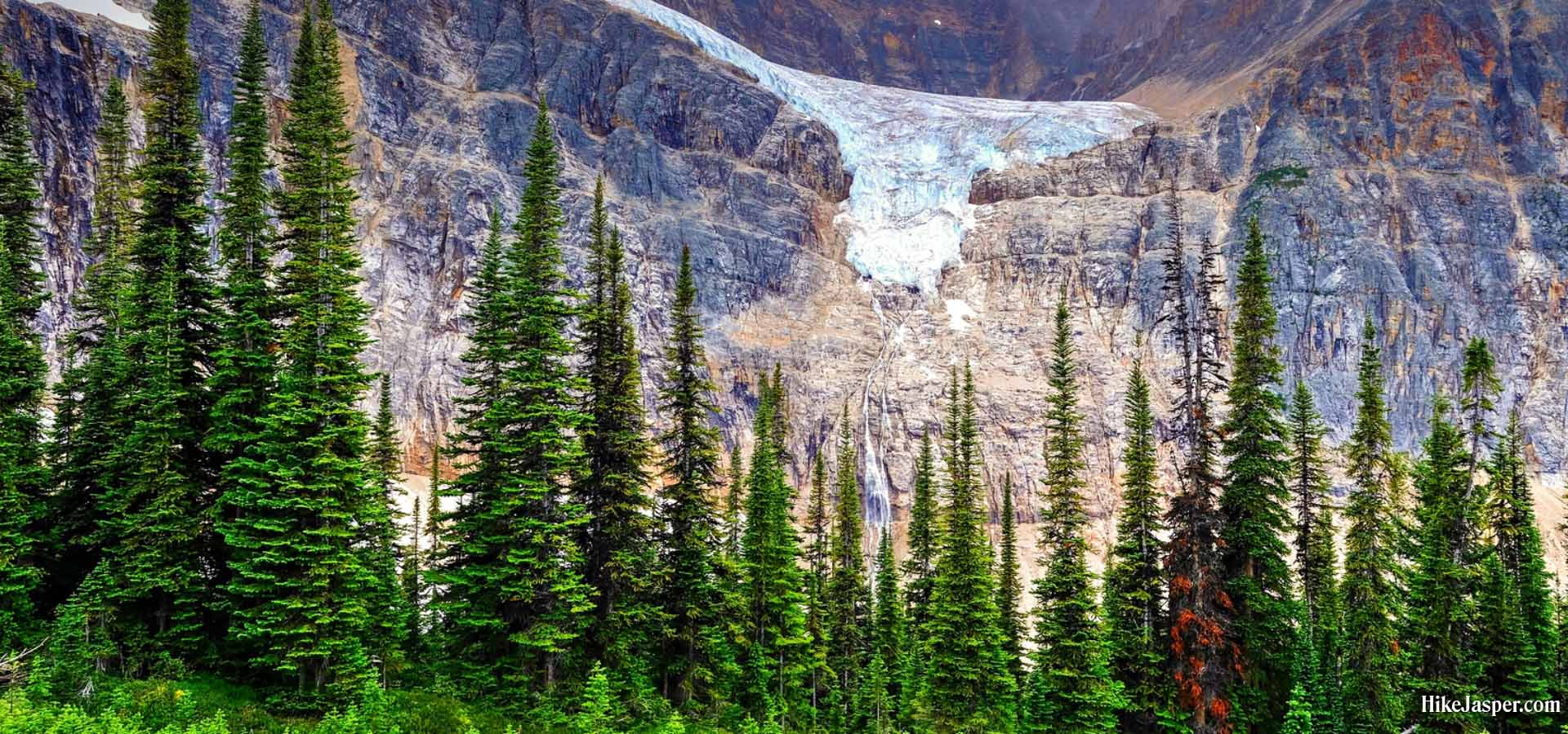 Hiking Jasper's Edith Cavell Meadows in 2019