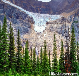 Hiking Jasper's Edith Cavell Meadows